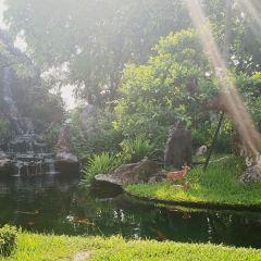 Thien Mu Pagoda User Photo