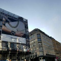 格拉本大街用戶圖片