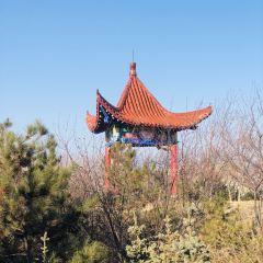 老虎山生態公園用戶圖片