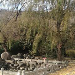 Chengding Mountain User Photo
