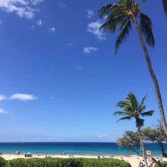 라나이 섬 여행 사진