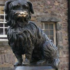 忠犬波比紀念碑用戶圖片
