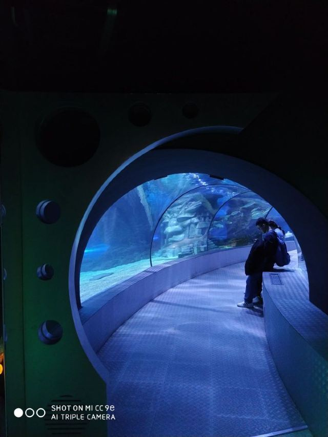 Changfeng Ocean World