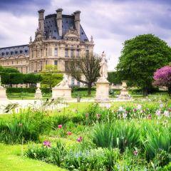 杜樂麗花園用戶圖片