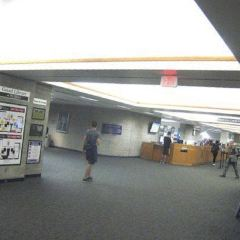 Geisel Library用戶圖片
