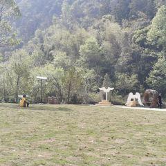 龍灣潭國家森林公園用戶圖片