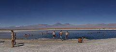 Laguna Chaxa User Photo