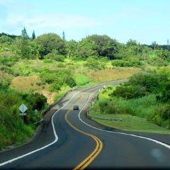 哈納公路用戶圖片