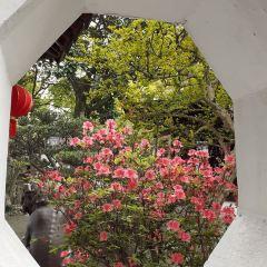 Yangshantang User Photo