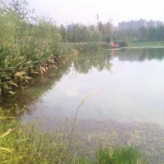 濕地公園用戶圖片