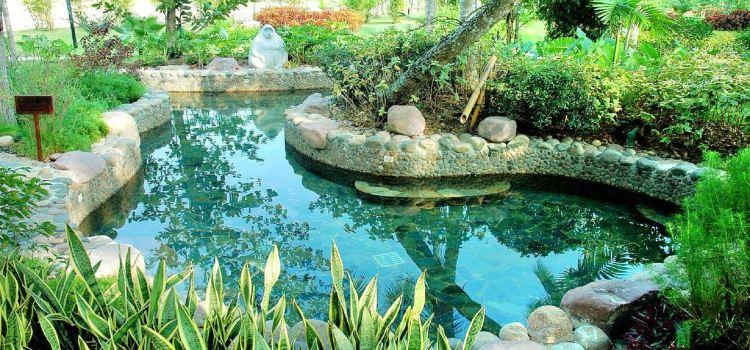 Pearl River Nantian Hot Spring