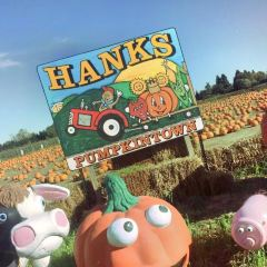 Hank's Pumpkintown‎ User Photo