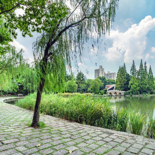 Yangpu Park