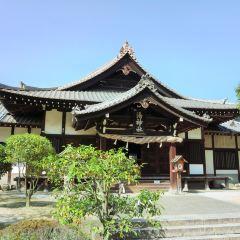 Dogo Onsen Sora no Sampomichi User Photo