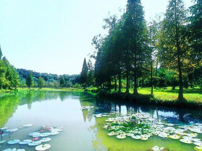 량펑강 국가산림공원