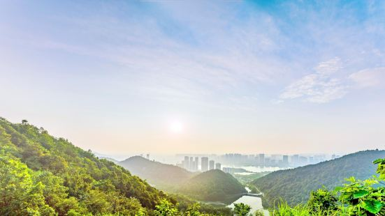 Taohualing Park