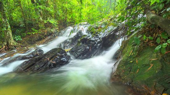 瓜拉雪蘭莪自然公園