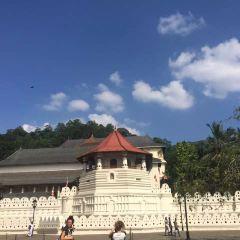 Gangaramaya Temple User Photo