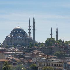 Yeni Cami User Photo