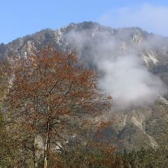 룽츠(용지) 국립수목원 여행 사진