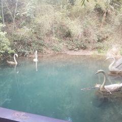 Wangxianling Scenic Tourist Area User Photo