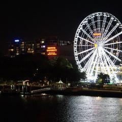 Wheel of Brisbane User Photo