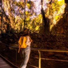 烏達拉火山國家公園用戶圖片
