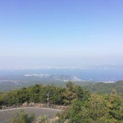 錦江灣用戶圖片