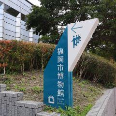 후쿠오카시 박물관 여행 사진