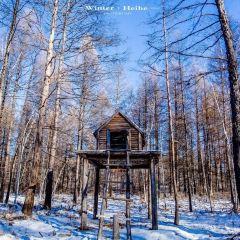 鄂倫春民俗旅遊區用戶圖片