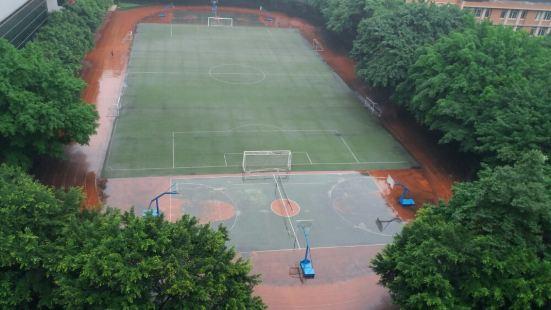 Chongqing No.8 Middle School