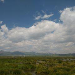 若爾蓋濕地(四川段)用戶圖片
