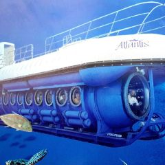 Atlantis Submarines User Photo