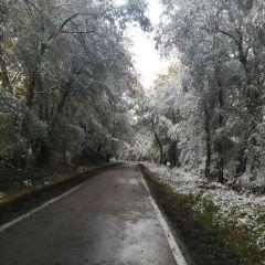 野果林風景區用戶圖片