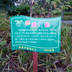 Xinghu Wetland Park User Photo