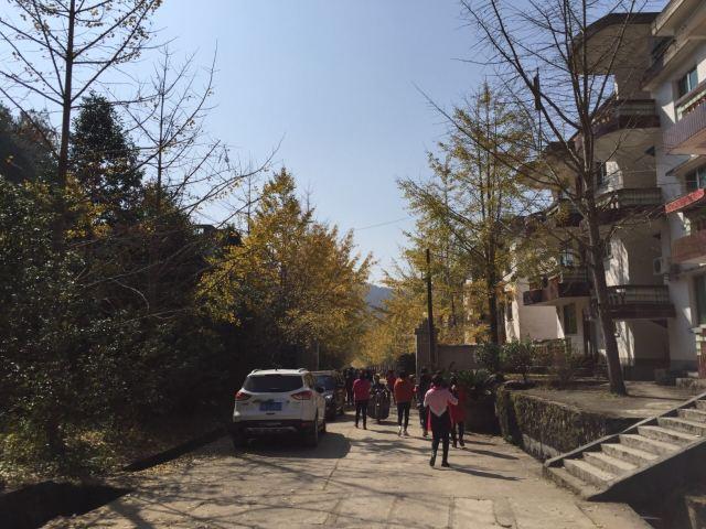 마오쯔펑 린창