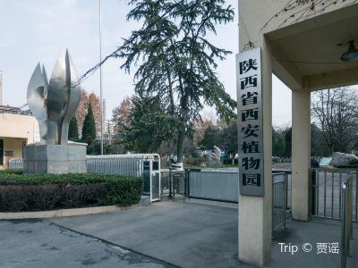 시안(서안) 식물원