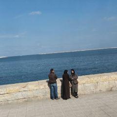 알랙산드리아 여행 사진