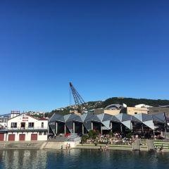 Wellington Waterfront User Photo