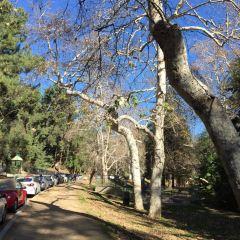 Griffith Park User Photo