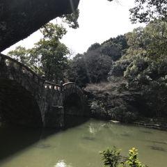眼鏡橋用戶圖片