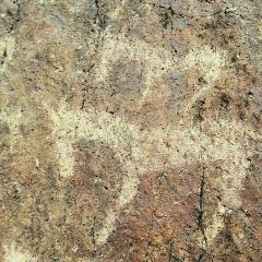 康家石門子岩画のユーザー投稿写真