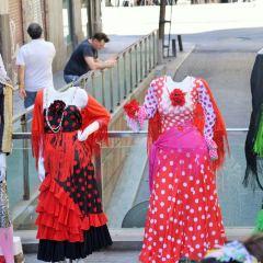 마요르 광장 여행 사진
