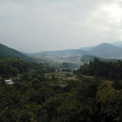 Taiping Lake User Photo