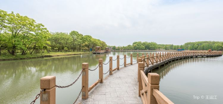The Shanghai Xuelang Lake Ecological Park