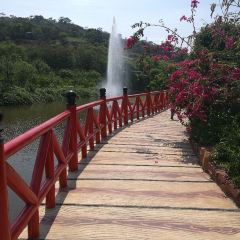 Dan Ying Agricultural Ecological Park User Photo