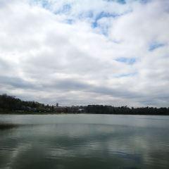 切斯納特水庫用戶圖片