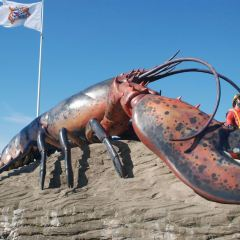 Parlee Beach Provincial Park User Photo