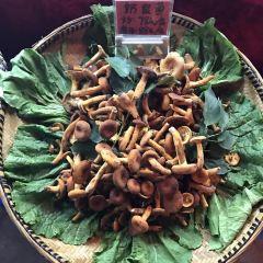 菌王松茸園用戶圖片