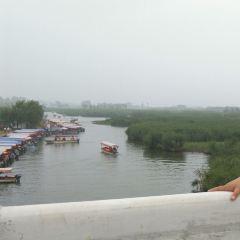 Baiyangdian Culture Yuan User Photo
